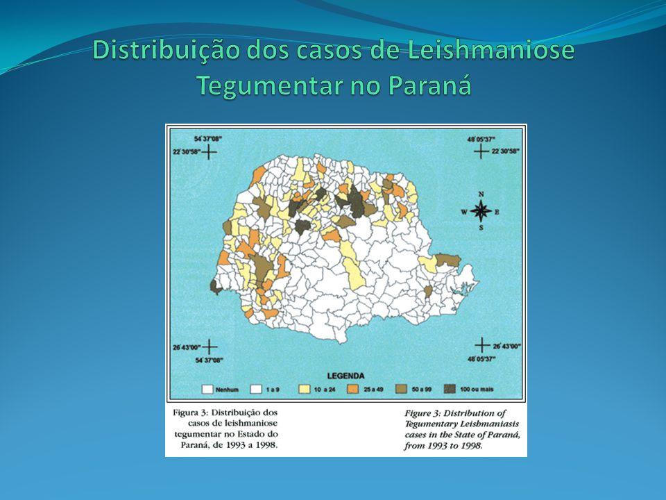 LEISHMANIOSE VISCERAL Calazar Leishmania chagasi Transmitida também pelo mosquito palha (Lutzomya sp) Febre, anemia e esplenomegalia (aumento do baço) Se não tratada, pode levar à morte