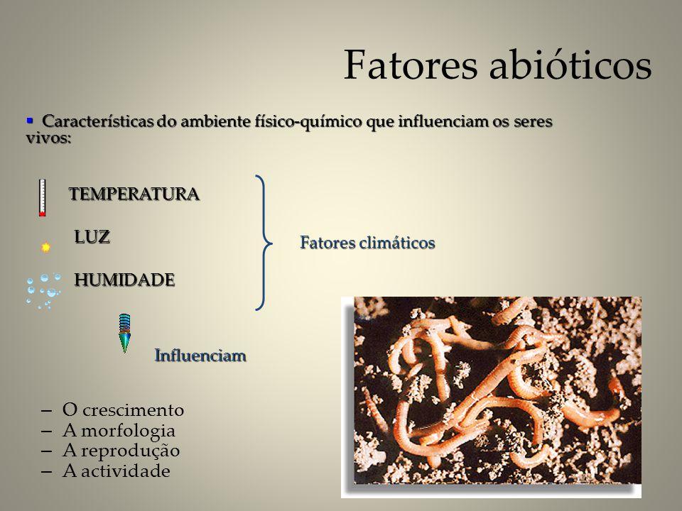 Fatores abióticos – O crescimento – A morfologia – A reprodução – A actividade Fatores climáticos Influenciam Características do ambiente físico-quími