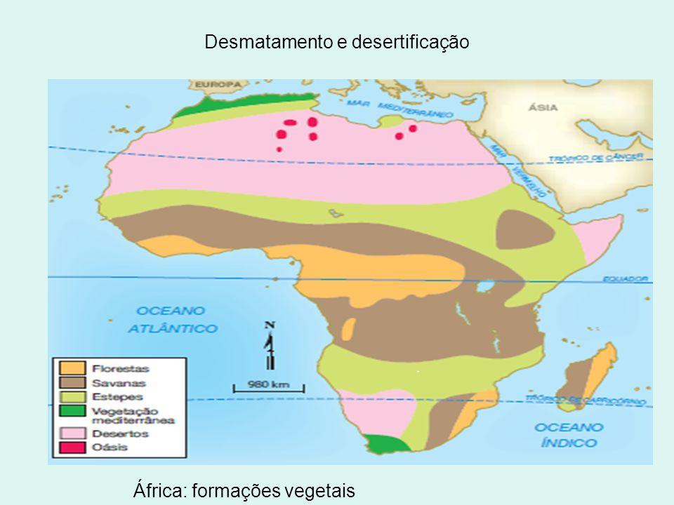 Desmatamento e desertificação África: formações vegetais