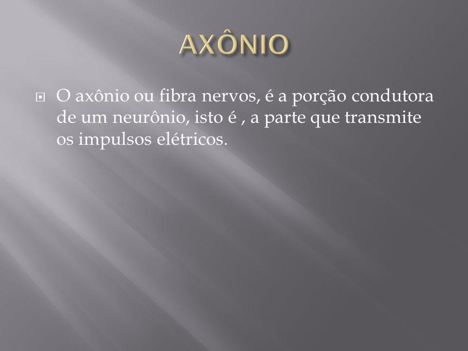 O axônio ou fibra nervos, é a porção condutora de um neurônio, isto é, a parte que transmite os impulsos elétricos.