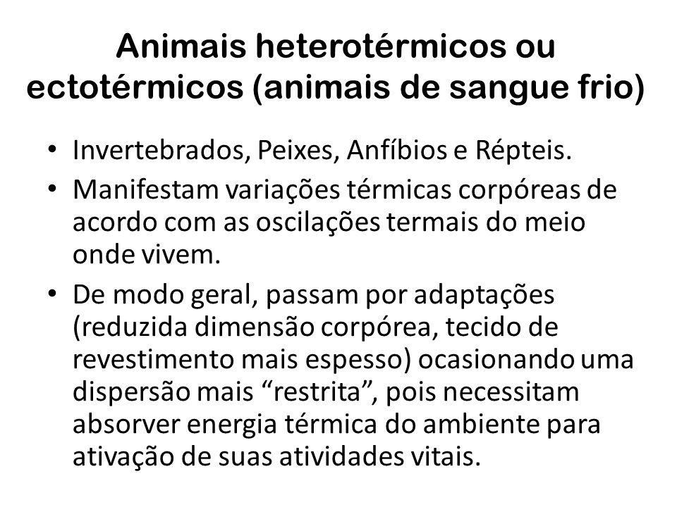Animais heterotérmicos ou ectotérmicos (animais de sangue frio) Invertebrados, Peixes, Anfíbios e Répteis. Manifestam variações térmicas corpóreas de