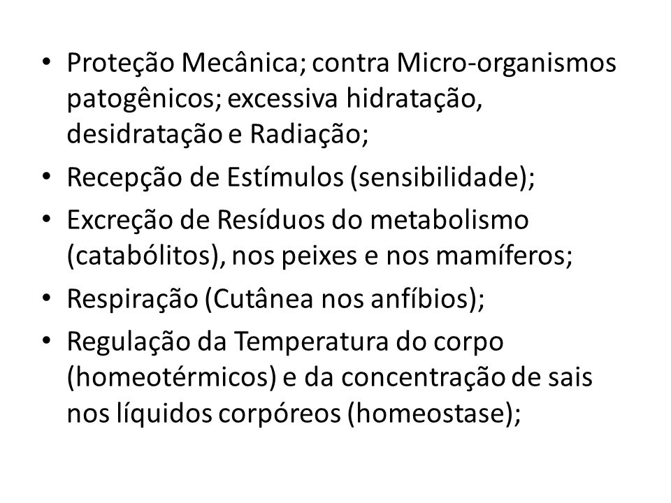 Proteção Mecânica; contra Micro-organismos patogênicos; excessiva hidratação, desidratação e Radiação; Recepção de Estímulos (sensibilidade); Excreção
