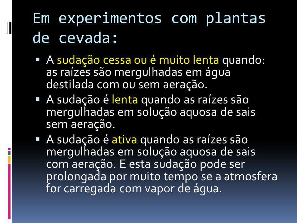 Em experimentos com plantas de cevada: A sudação cessa ou é muito lenta quando: as raízes são mergulhadas em água destilada com ou sem aeração. A suda