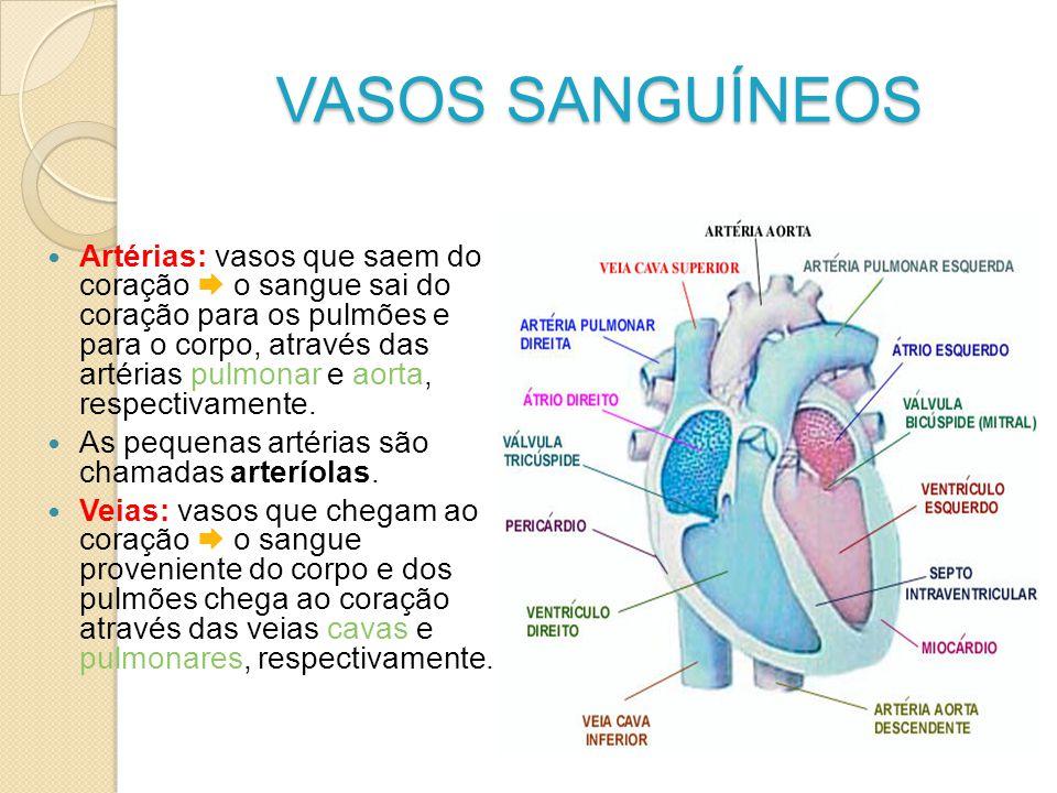VASOS SANGUÍNEOS Artérias: vasos que saem do coração o sangue sai do coração para os pulmões e para o corpo, através das artérias pulmonar e aorta, re