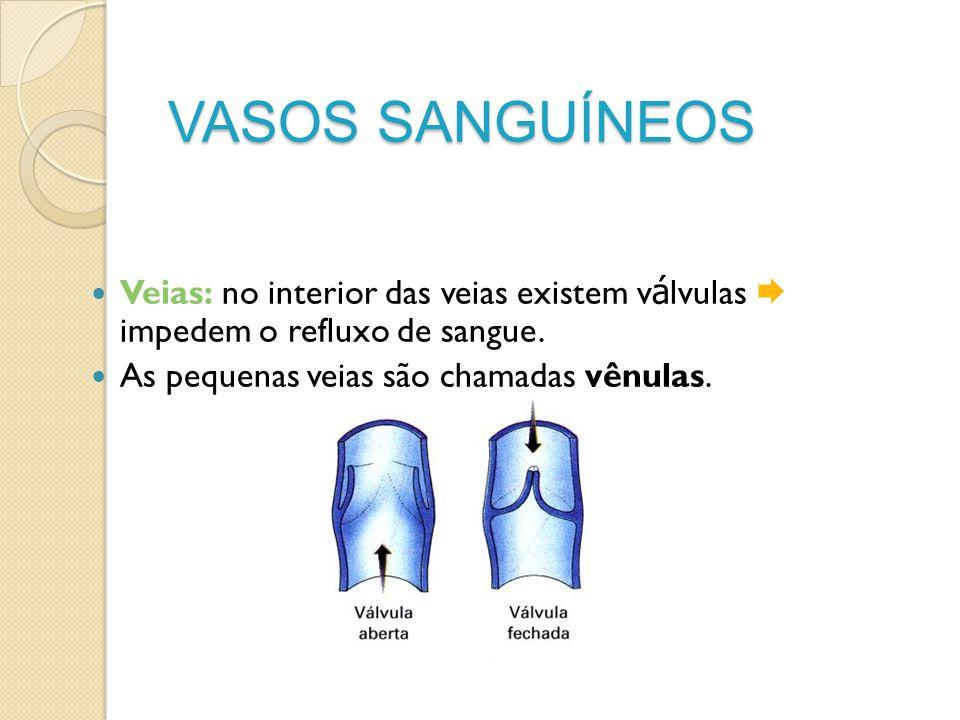 VASOS SANGUÍNEOS Veias: no interior das veias existem v á lvulas impedem o refluxo de sangue. As pequenas veias são chamadas vênulas.