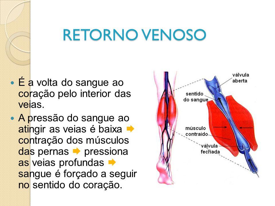 RETORNO VENOSO É a volta do sangue ao coração pelo interior das veias. A pressão do sangue ao atingir as veias é baixa contração dos músculos das pern