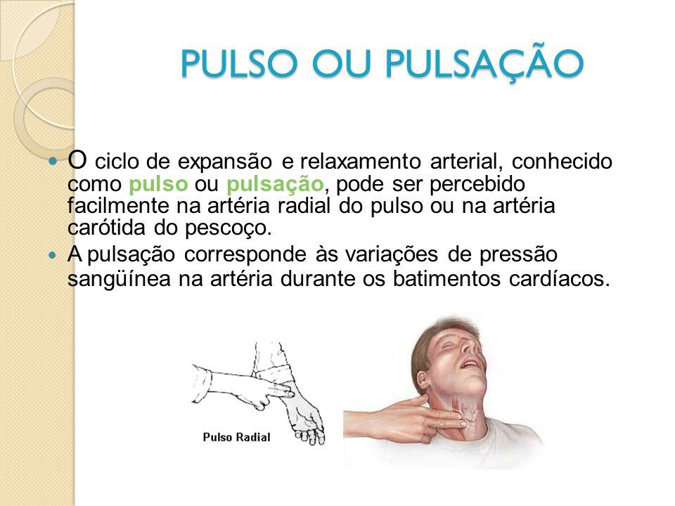 PULSO OU PULSAÇÃO O ciclo de expansão e relaxamento arterial, conhecido como pulso ou pulsação, pode ser percebido facilmente na artéria radial do pul