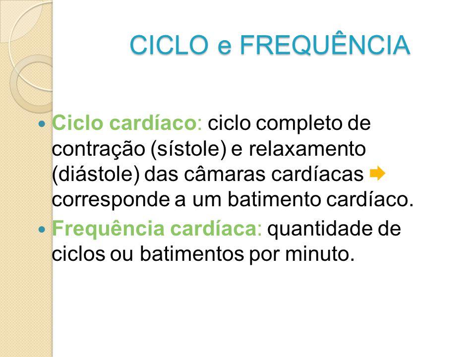 CICLO e FREQUÊNCIA Ciclo cardíaco: ciclo completo de contração (sístole) e relaxamento (diástole) das câmaras cardíacas corresponde a um batimento car