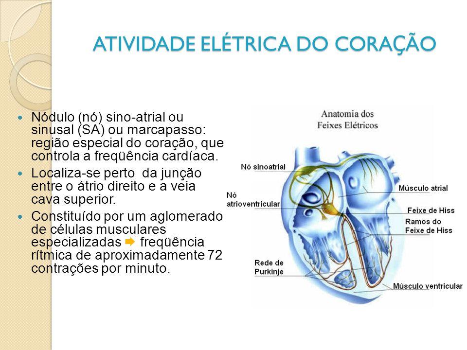 ATIVIDADE ELÉTRICA DO CORA Ç ÃO Nódulo (nó) sino-atrial ou sinusal (SA) ou marcapasso: região especial do coração, que controla a freqüência cardíaca.
