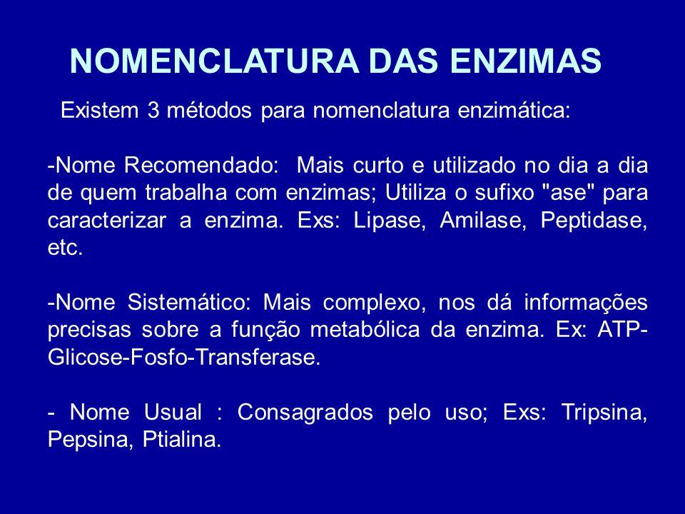 NOMENCLATURA DAS ENZIMAS Existem 3 métodos para nomenclatura enzimática: -Nome Recomendado: Mais curto e utilizado no dia a dia de quem trabalha com enzimas; Utiliza o sufixo ase para caracterizar a enzima.
