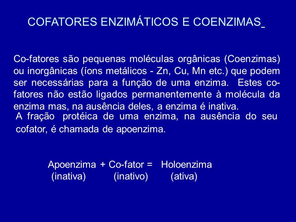 COFATORES ENZIMÁTICOS E COENZIMAS Co-fatores são pequenas moléculas orgânicas (Coenzimas) ou inorgânicas (íons metálicos - Zn, Cu, Mn etc.) que podem ser necessárias para a função de uma enzima.