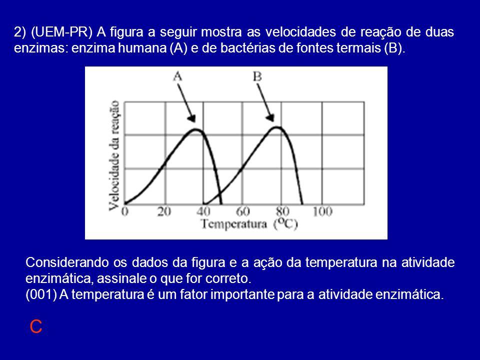 2) (UEM-PR) A figura a seguir mostra as velocidades de reação de duas enzimas: enzima humana (A) e de bactérias de fontes termais (B).
