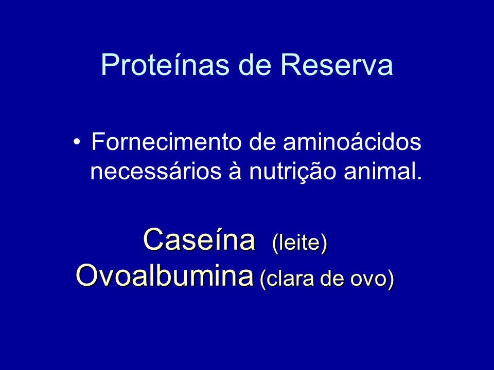 Fornecimento de aminoácidos necessários à nutrição animal.