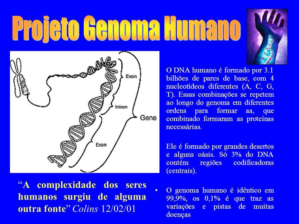 O DNA humano é formado por 3.1 bilhões de pares de base, com 4 nucleotídeos diferentes (A, C, G, T).