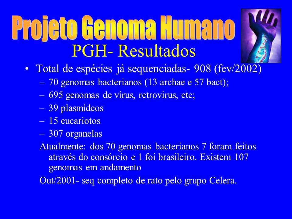 PGH- Resultados Total de espécies já sequenciadas- 908 (fev/2002) –70 genomas bacterianos (13 archae e 57 bact); –695 genomas de vírus, retrovirus, etc; –39 plasmídeos –15 eucariotos –307 organelas Atualmente: dos 70 genomas bacterianos 7 foram feitos através do consórcio e 1 foi brasileiro.