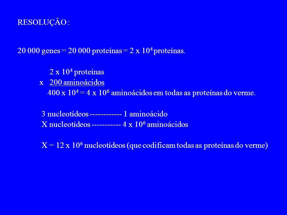 RESOLUÇÃO : 20 000 genes = 20 000 proteínas = 2 x 10 4 proteínas.