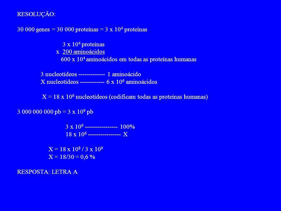 RESOLUÇÃO: 30 000 genes = 30 000 proteínas = 3 x 10 4 proteínas 3 x 10 4 proteínas x 200 aminoácidos 600 x 10 4 aminoácidos em todas as proteínas humanas 3 nucleotídeos ------------- 1 aminoácido X nucleotídeos ------------ 6 x 10 6 aminoácidos X = 18 x 10 6 nucleotídeos (codificam todas as proteínas humanas) 3 000 000 000 pb = 3 x 10 9 pb 3 x 10 9 ---------------- 100% 18 x 10 6 ---------------- X X = 18 x 10 8 / 3 x 10 9 X = 18/30 = 0,6 % RESPOSTA: LETRA A