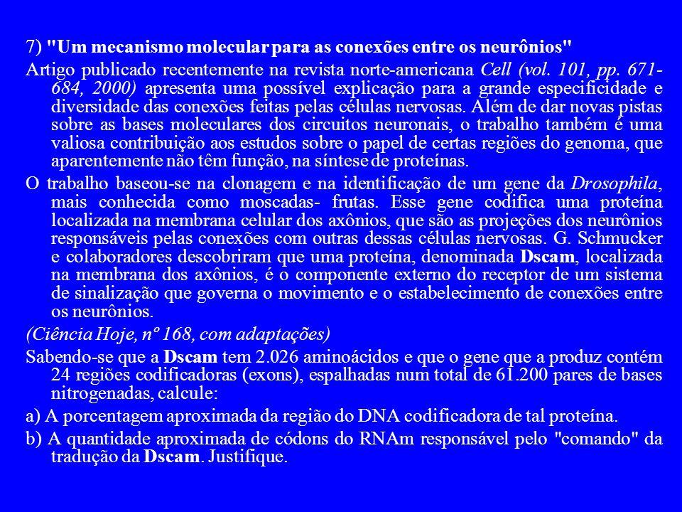 7) Um mecanismo molecular para as conexões entre os neurônios Artigo publicado recentemente na revista norte-americana Cell (vol.