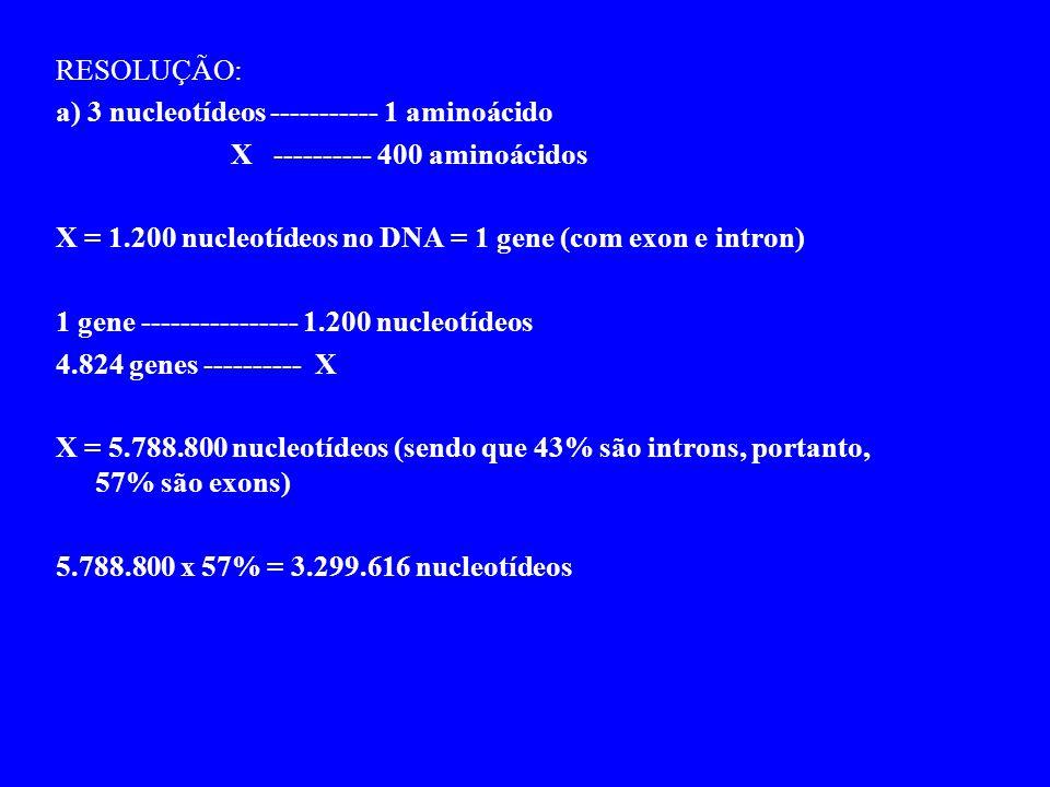 RESOLUÇÃO: a) 3 nucleotídeos ----------- 1 aminoácido X ---------- 400 aminoácidos X = 1.200 nucleotídeos no DNA = 1 gene (com exon e intron) 1 gene ---------------- 1.200 nucleotídeos 4.824 genes ---------- X X = 5.788.800 nucleotídeos (sendo que 43% são introns, portanto, 57% são exons) 5.788.800 x 57% = 3.299.616 nucleotídeos