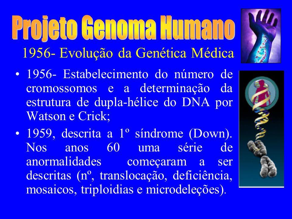 1956- Evolução da Genética Médica 1956- Estabelecimento do número de cromossomos e a determinação da estrutura de dupla-hélice do DNA por Watson e Crick; 1959, descrita a 1º síndrome (Down).
