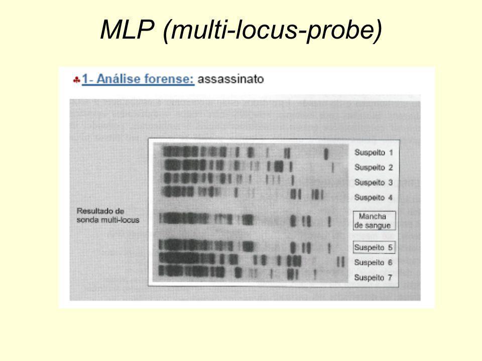 MLP (multi-locus-probe)