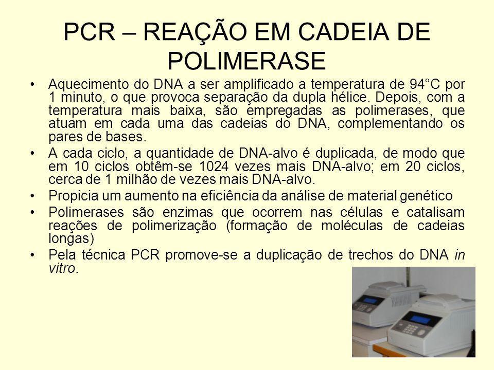 PCR – REAÇÃO EM CADEIA DE POLIMERASE Aquecimento do DNA a ser amplificado a temperatura de 94°C por 1 minuto, o que provoca separação da dupla hélice.
