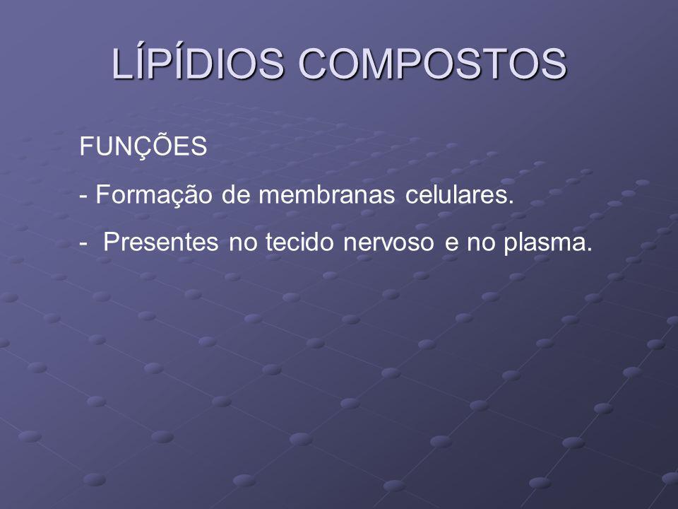 LÍPÍDIOS COMPOSTOS FUNÇÕES - Formação de membranas celulares. - Presentes no tecido nervoso e no plasma.