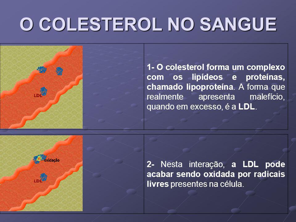 O COLESTEROL NO SANGUE 1- O colesterol forma um complexo com os lipídeos e proteínas, chamado lipoproteína. A forma que realmente apresenta malefício,