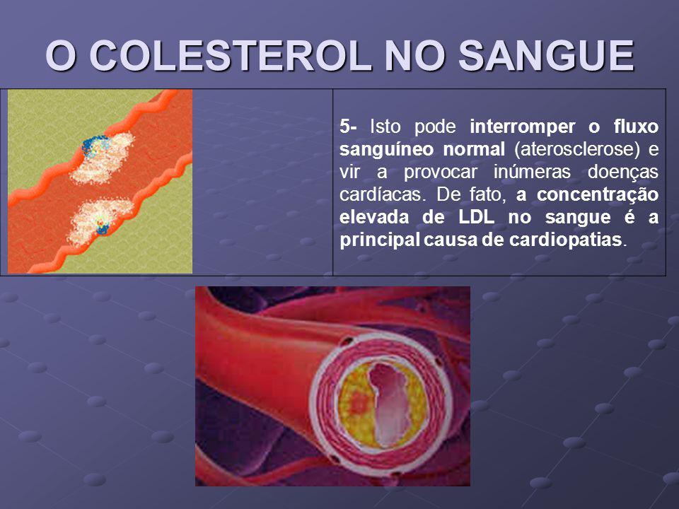 O COLESTEROL NO SANGUE 5- Isto pode interromper o fluxo sanguíneo normal (aterosclerose) e vir a provocar inúmeras doenças cardíacas. De fato, a conce
