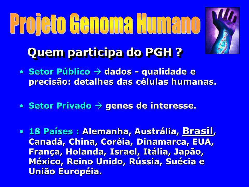 Quem participa do PGH ? Setor Público dados - qualidade e precisão: detalhes das células humanas.Setor Público dados - qualidade e precisão: detalhes