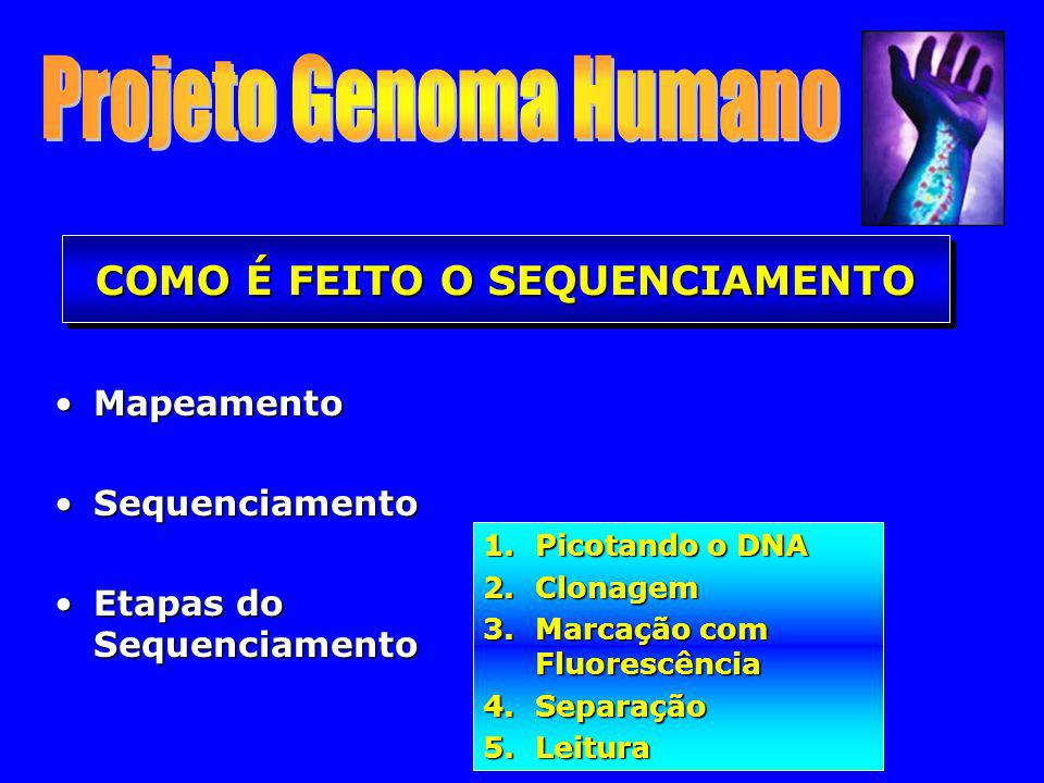 MapeamentoMapeamento SequenciamentoSequenciamento Etapas do SequenciamentoEtapas do Sequenciamento COMO É FEITO O SEQUENCIAMENTO 1.Picotando o DNA 2.C