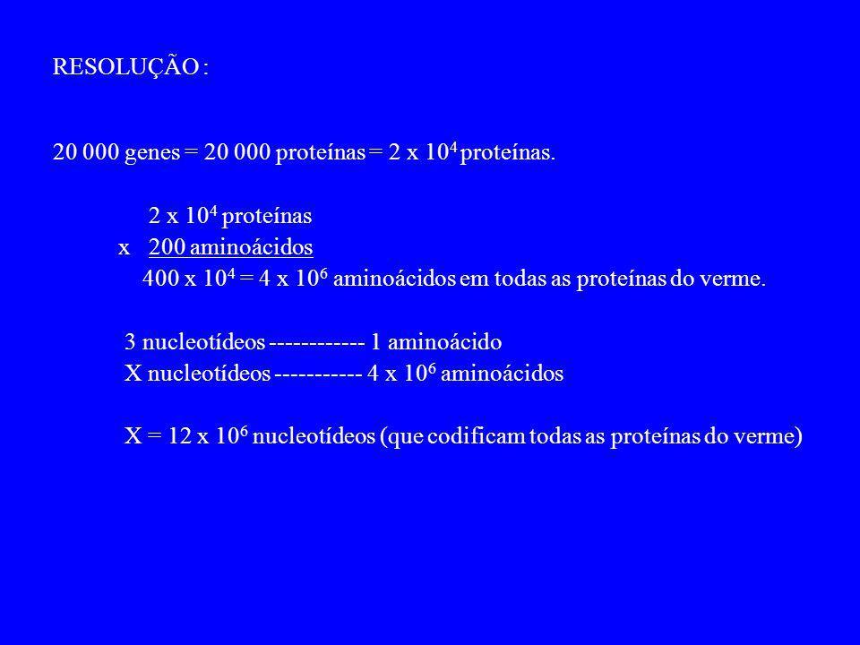 RESOLUÇÃO : 20 000 genes = 20 000 proteínas = 2 x 10 4 proteínas. 2 x 10 4 proteínas x 200 aminoácidos 400 x 10 4 = 4 x 10 6 aminoácidos em todas as p