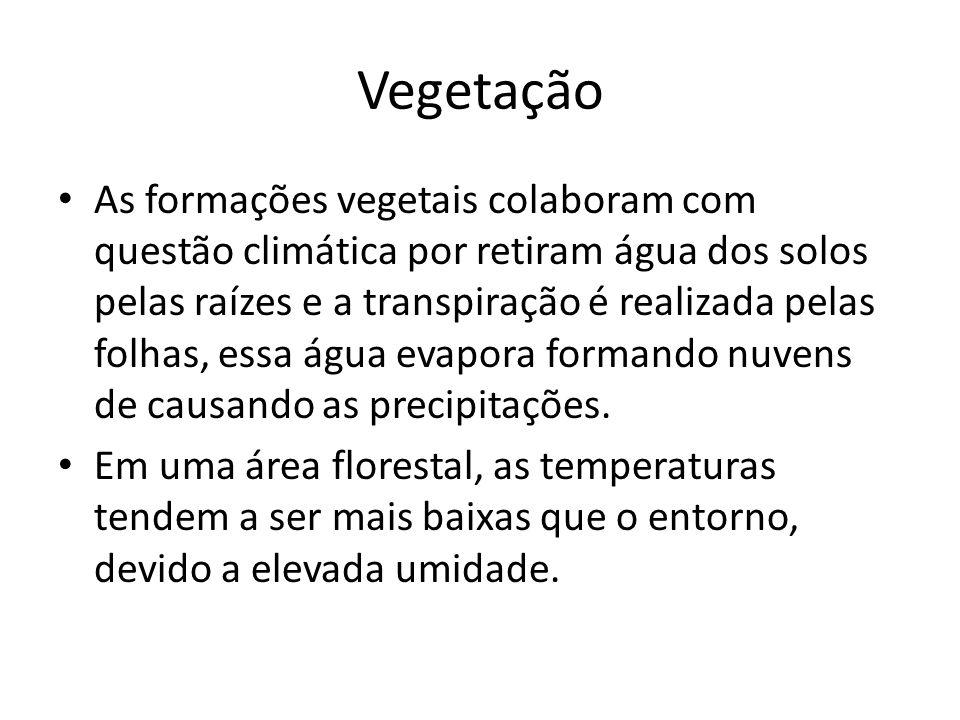 Vegetação As formações vegetais colaboram com questão climática por retiram água dos solos pelas raízes e a transpiração é realizada pelas folhas, essa água evapora formando nuvens de causando as precipitações.