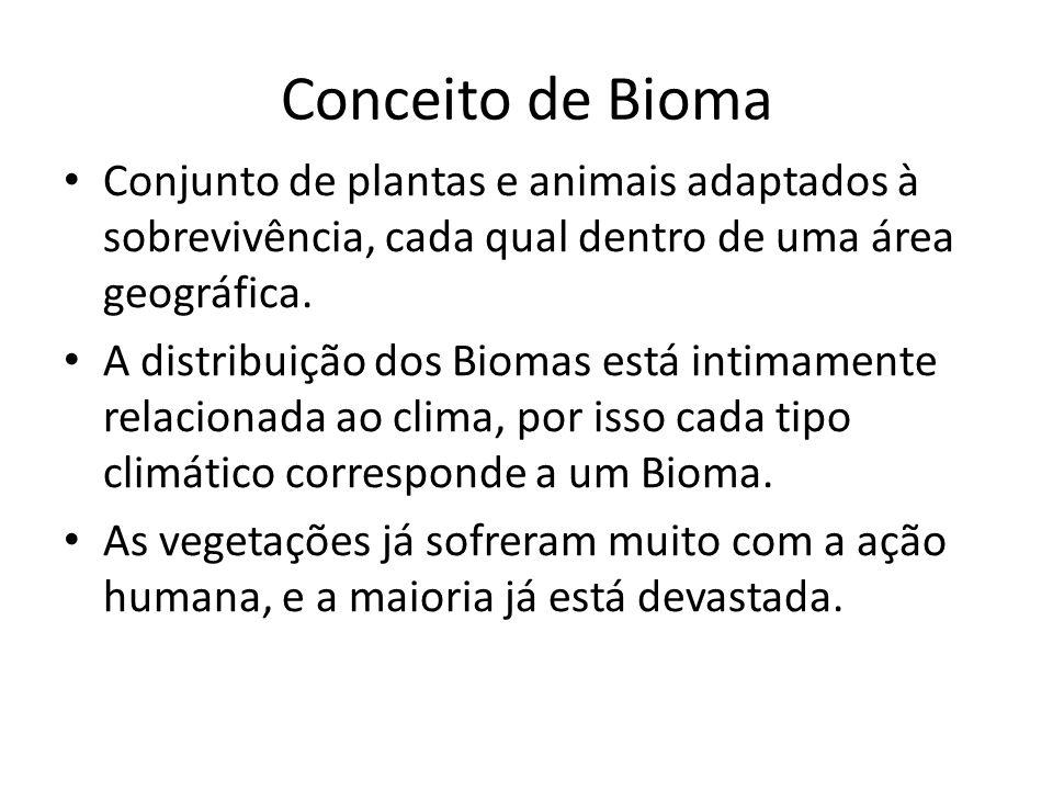 Conceito de Bioma Conjunto de plantas e animais adaptados à sobrevivência, cada qual dentro de uma área geográfica.
