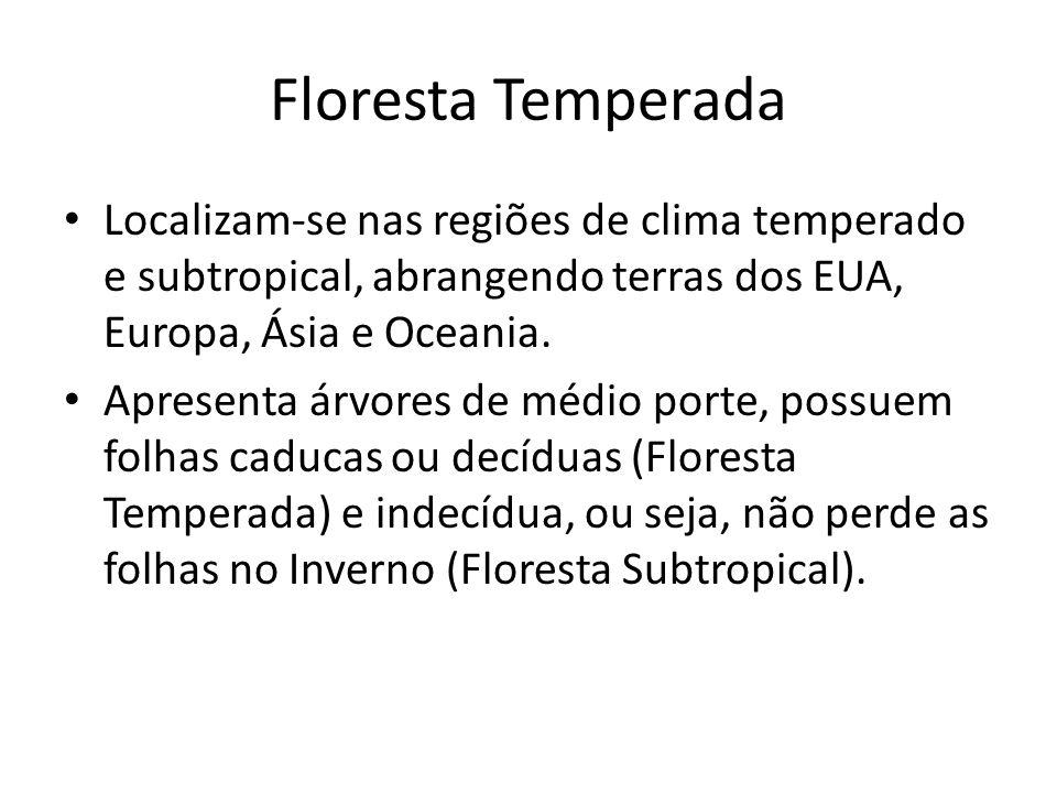 Floresta Temperada Localizam-se nas regiões de clima temperado e subtropical, abrangendo terras dos EUA, Europa, Ásia e Oceania.