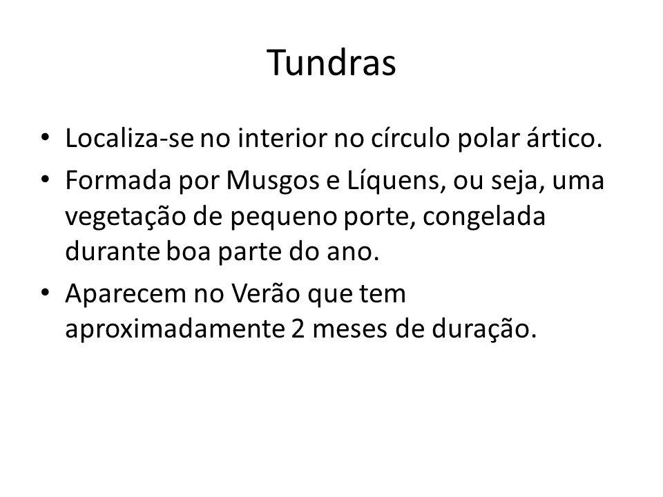 Tundras Localiza-se no interior no círculo polar ártico.