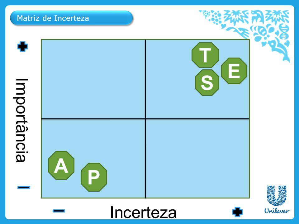 Matriz de Incerteza Ice Cream & Beverages Personal Care Importância Incerteza T E P A S