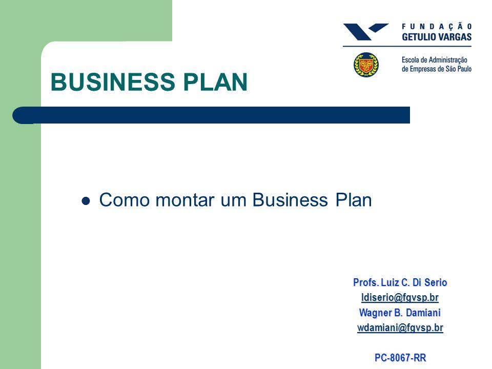 BUSINESS PLAN Como montar um Business Plan Profs. Luiz C. Di Serio ldiserio@fgvsp.br Wagner B. Damiani wdamiani@fgvsp.br PC-8067-RR