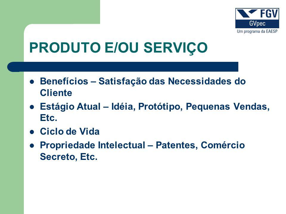 PRODUTO E/OU SERVIÇO Benefícios – Satisfação das Necessidades do Cliente Estágio Atual – Idéia, Protótipo, Pequenas Vendas, Etc. Ciclo de Vida Proprie