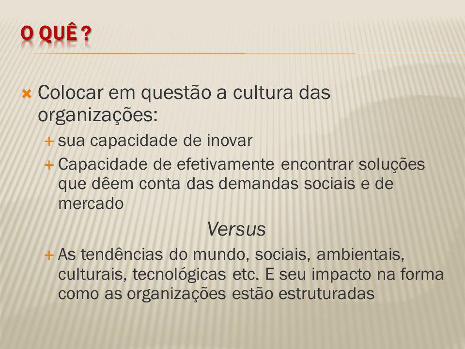 Para isto, serão postos em discussão aspectos que constituem a forma – fatores - como as culturas organizacionais estão formatadas.