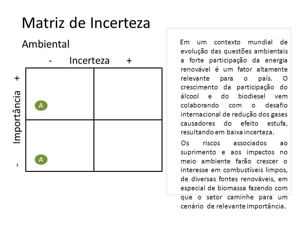 Matriz de Incerteza - Incerteza + Tecnológica T I - Importância + T T Para o setor de biocombustíveis, no país, o grau de incerteza e importância é elevado, mesmo considerando que o Brasil possua relativa vantagens comparativas de extensão de área, clima adequado, mão-de-obra farta e experiência no ramo, devido à necessidade de forte investimento à fim de garantir a melhoria do processamento e o aumento da eficiência das fontes energéticas atualmente dependerem de inovações tecnológicas.