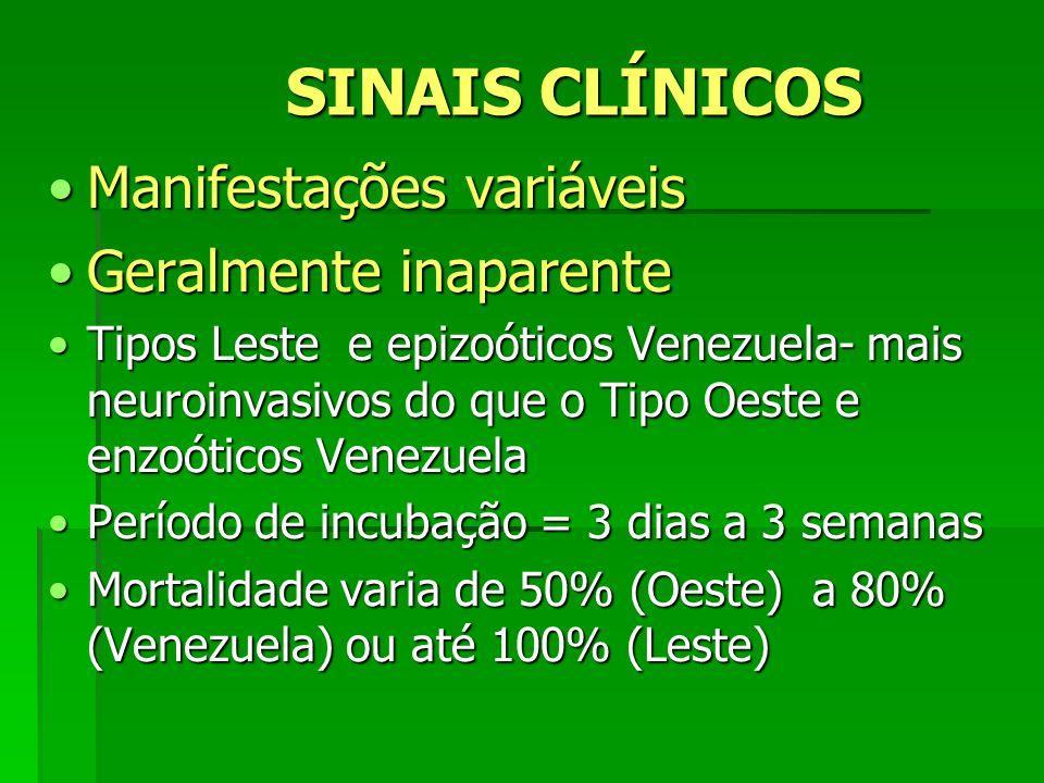 SINAIS CLÍNICOS Manifestações variáveisManifestações variáveis Geralmente inaparenteGeralmente inaparente Tipos Leste e epizoóticos Venezuela- mais ne