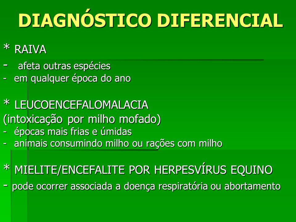 DIAGNÓSTICO DIFERENCIAL * RAIVA - afeta outras espécies -em qualquer época do ano * LEUCOENCEFALOMALACIA (intoxicação por milho mofado) -épocas mais f
