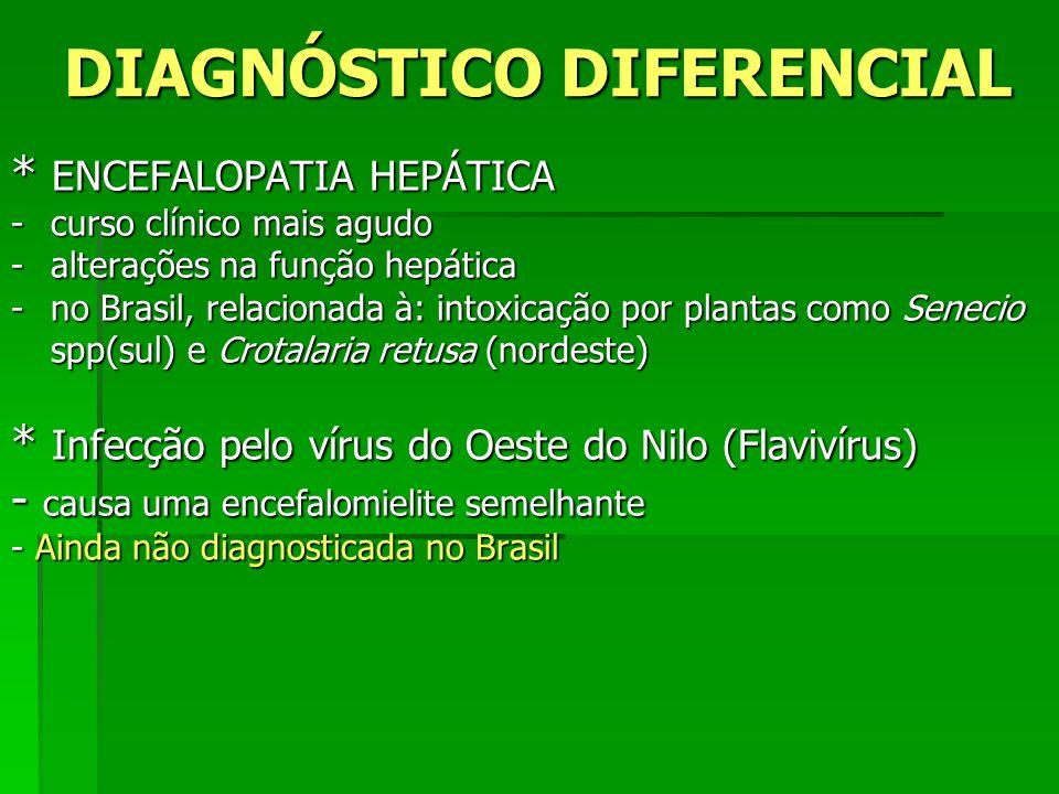 DIAGNÓSTICO DIFERENCIAL * ENCEFALOPATIA HEPÁTICA -curso clínico mais agudo -alterações na função hepática -no Brasil, relacionada à: intoxicação por p