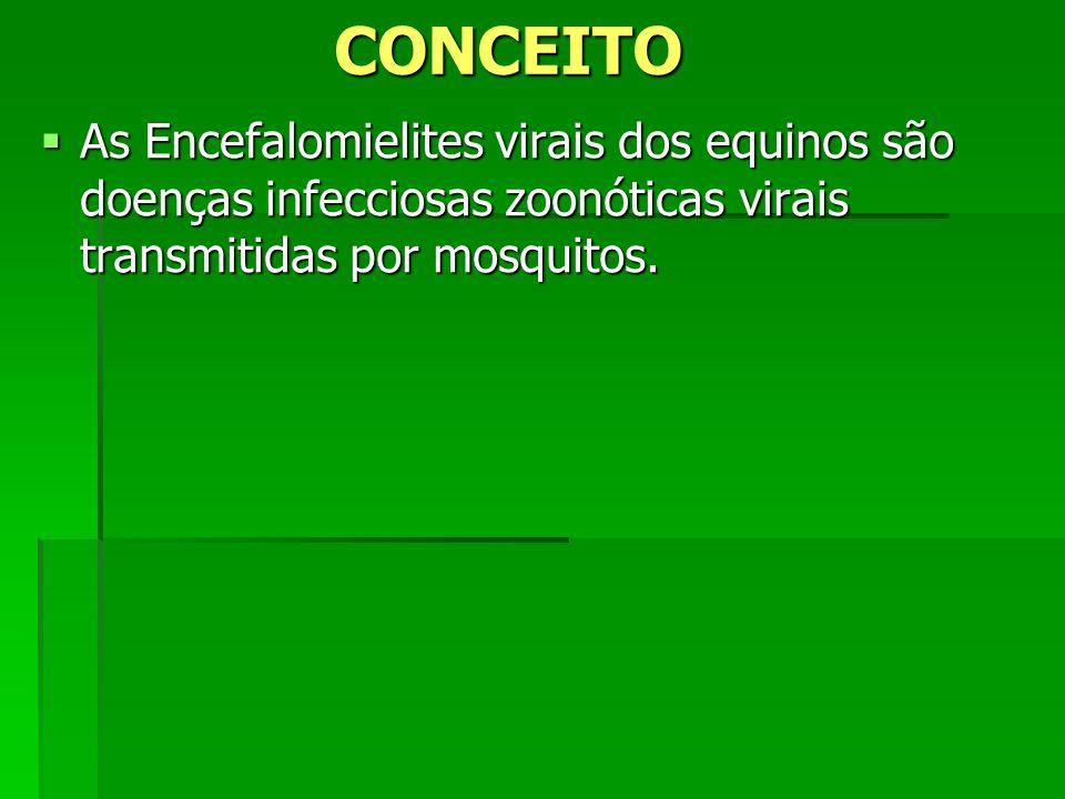 CONCEITO As Encefalomielites virais dos equinos são doenças infecciosas zoonóticas virais transmitidas por mosquitos. As Encefalomielites virais dos e