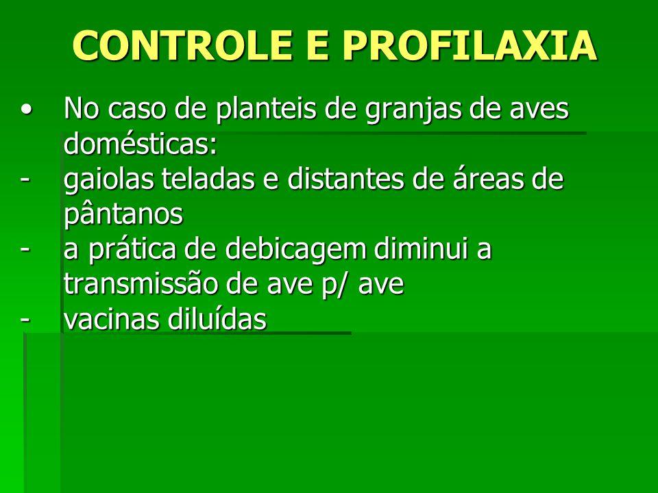 CONTROLE E PROFILAXIA No caso de planteis de granjas de aves domésticas:No caso de planteis de granjas de aves domésticas: -gaiolas teladas e distante