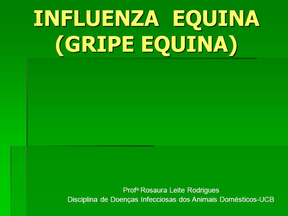 INFLUENZA EQUINA (GRIPE EQUINA) Prof a Rosaura Leite Rodrigues Disciplina de Doenças Infecciosas dos Animais Domésticos-UCB