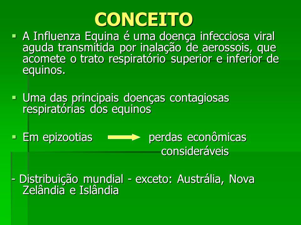 CONCEITO A Influenza Equina é uma doença infecciosa viral aguda transmitida por inalação de aerossois, que acomete o trato respiratório superior e inf
