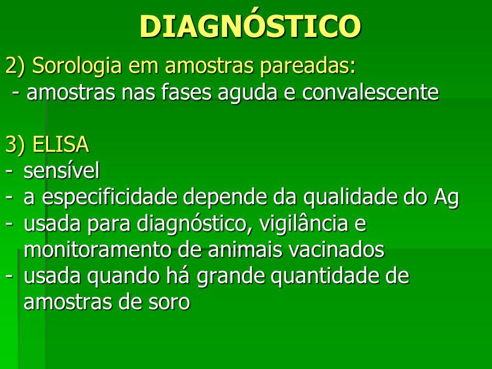 DIAGNÓSTICO 2) Sorologia em amostras pareadas: - amostras nas fases aguda e convalescente - amostras nas fases aguda e convalescente 3) ELISA -sensíve