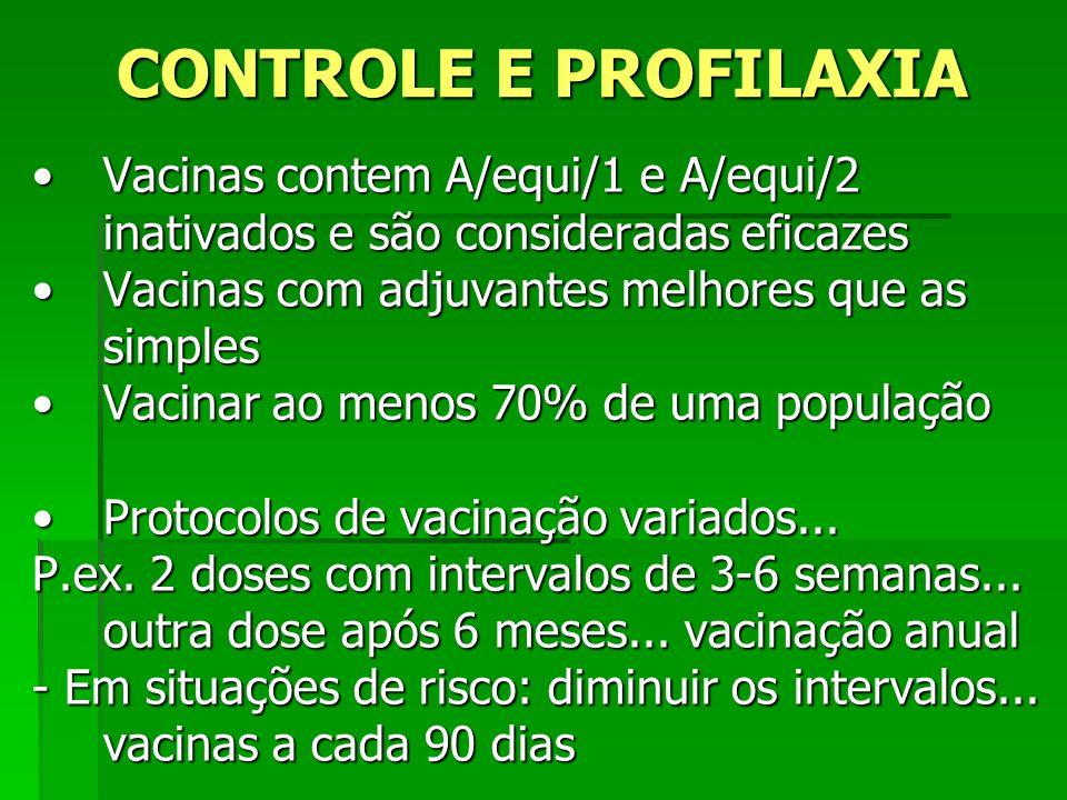 CONTROLE E PROFILAXIA Vacinas contem A/equi/1 e A/equi/2 inativados e são consideradas eficazesVacinas contem A/equi/1 e A/equi/2 inativados e são con